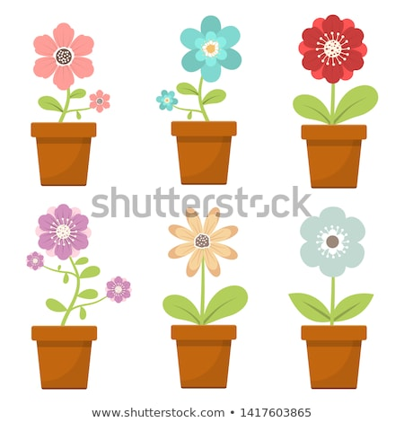 Kleurrijk bloemen bloempot tuin paars Rood Stockfoto © ozgur