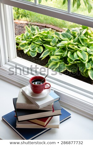 Coffee on Top of Piled Books at the Window Stock photo © ozgur