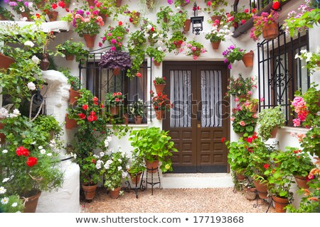 Street of Flowers in Cordoba in Spain Stock photo © backyardproductions
