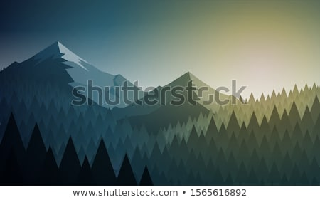 winter morning in the mountains stock photo © kotenko