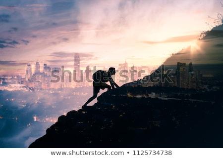 chat · oiseau · silhouette · coucher · du · soleil - photo stock © lightsource