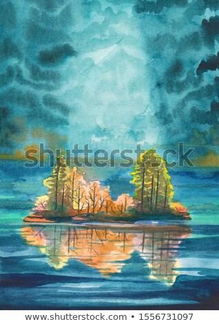 sziget · tó · kép · kacsa · Ontario · víz - stock fotó © rmbarricarte