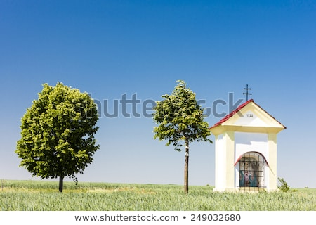 gods torture with grain czech republic stock photo © phbcz
