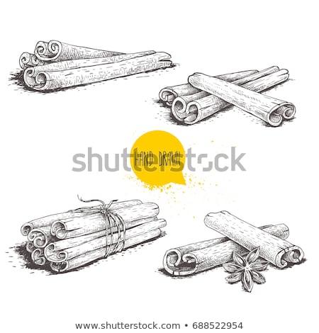 Bunch of cinnamon sticks tied with twine Stock photo © Valeriy