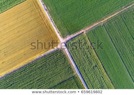 Composite image of image of a drone Stock photo © wavebreak_media