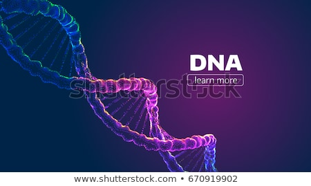 colorful 3d dna stock photo © idesign