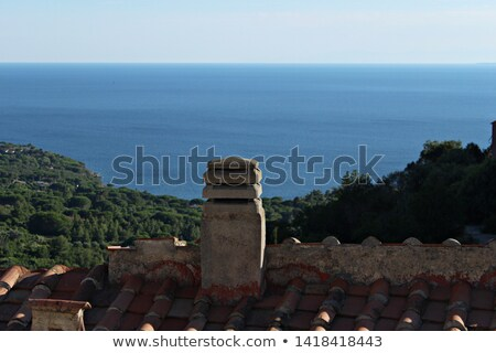 Tuscany landscape with ancient castle, vineyard and green hills, Italy. Vintage Stock photo © photocreo