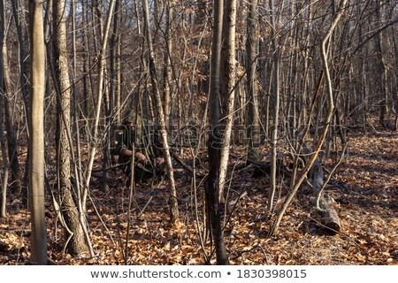 Cazador hombre verde blanco armas Foto stock © dnsphotography