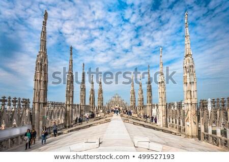 Sculptuur dak kathedraal stad kunst kerk Stockfoto © OleksandrO