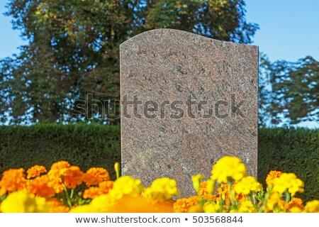 Grafsteen grond illustratie bloem kruis achtergrond Stockfoto © bluering