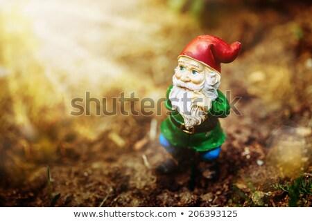 おもちゃ 庭園 ノーム 太陽 光 ぼけ味 ストックフォト © dariazu