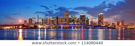 Stock fotó: Városkép · panoráma · alkonyat · városi · felhőkarcolók · híd