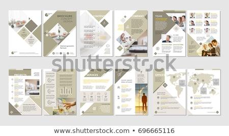 éves jelentés üzlet szórólap terv profi Stock fotó © SArts