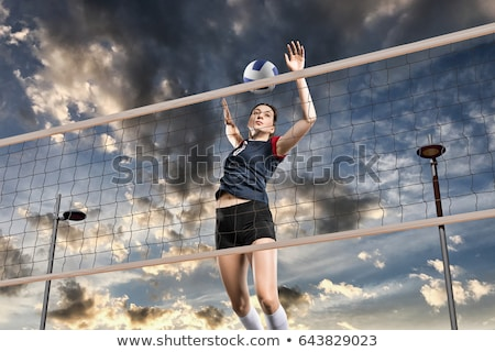 Femenino jugadores jugando voleibol tribunal pelota Foto stock © wavebreak_media