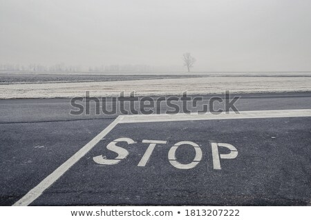Hoar frost on STOP sign Stock photo © pictureguy