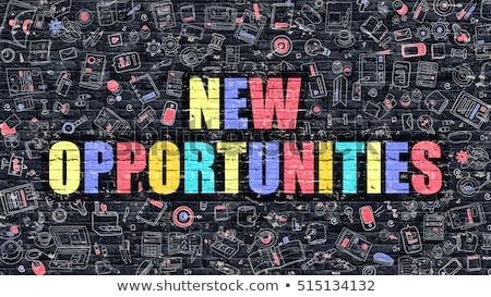 új · lehetőségek · célok · fehér · ajtó · fűmező - stock fotó © tashatuvango
