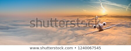 Luxury business jets at sunset stock photo © tracer