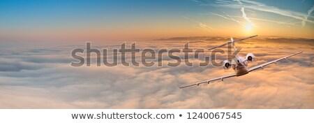 Lujo negocios puesta de sol estilizado Jet cielo Foto stock © tracer