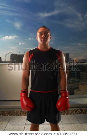 Boxer standing on urban rooftop Stock photo © IS2