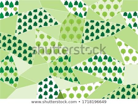 пальмовых листьев многоугольник шаблон стиль зеленый белый Сток-фото © alexmillos