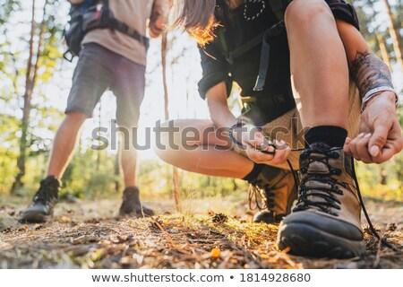 female hiker tying shoelaces in forest stock photo © wavebreak_media
