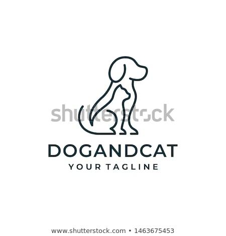 cartoon veterinarian character with cat and dog stock photo © krisdog