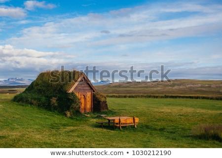 古い · 家 · 草 · 屋根 · 美しい · 木製 - ストックフォト © kotenko