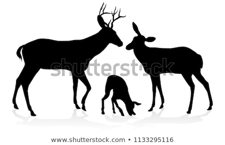 Deer Family Silhouettes Stock photo © Krisdog