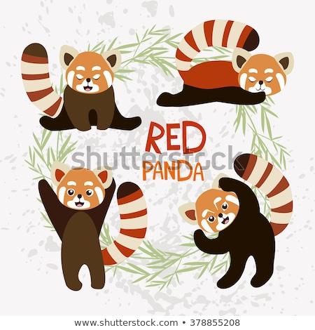 Cartoon Rood panda lopen illustratie glimlachend Stockfoto © cthoman