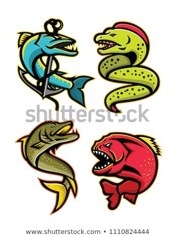 ferocious fishes sports mascot collection stock photo © patrimonio