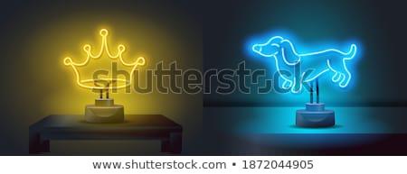 girl power neon label set stock photo © anna_leni