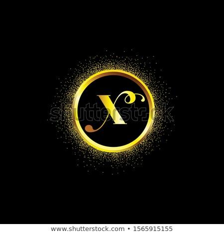 golden wedding rings letter x vector logo icon Stock photo © blaskorizov