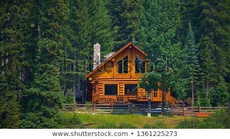 Fából készült kunyhó erdő illusztráció ház természet Stock fotó © colematt