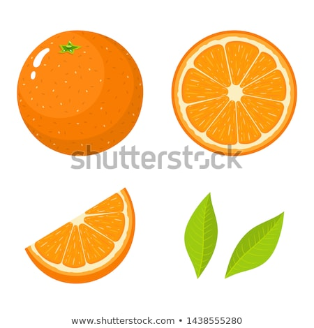 vector set of orange stock photo © olllikeballoon