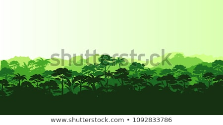 セット 熱帯雨林 シーン 実例 水 家 ストックフォト © bluering