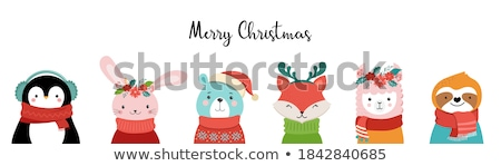 Merry Christmas Animal Wearing Knitted Socks Set Stock photo © robuart