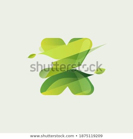 Bio címke fű vegan poszter szárított növénygyűjtemény Stock fotó © robuart
