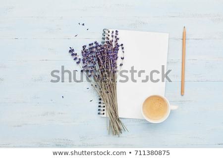 Café lavanda flor azul acima bom dia Foto stock © Illia