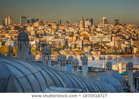 üst görmek İstanbul çatı cami Türkiye Stok fotoğraf © boggy