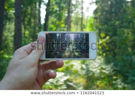 Mężczyzna strony cyfrowe kamery Zdjęcia stock © Freedomz