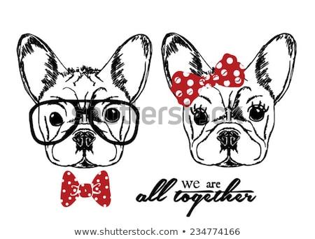 French Bulldog Dog Breed Cartoon Retro Drawing Stock photo © patrimonio