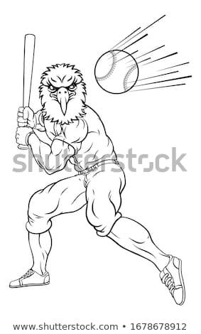 Sas baseball játékos kabala denevér labda rajzolt állat Stock fotó © Krisdog