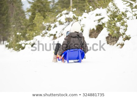Child Going Downhill on Sledges in Winter Forest Stock photo © robuart