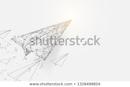 самолет низкий Черно-белые стиль дизайна цифровой Сток-фото © tashatuvango