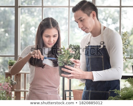 Man and woman professional gardeners with small potted tree in the garden Stock photo © dash