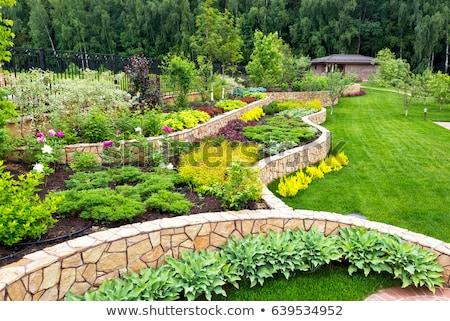 庭園 造園 ガーデニング 風景 デザイン 多年生植物 ストックフォト © Lightsource