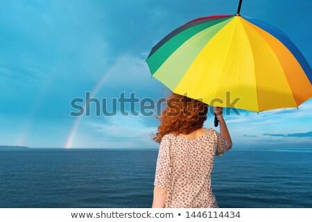 Silhouettes of umbrellas in iridescent colors Stock photo © mayboro