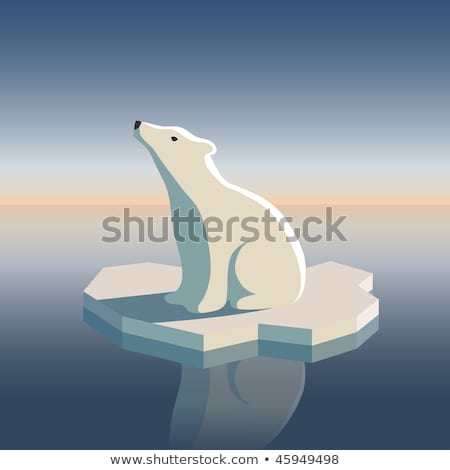 Oso polar hielo posible resultado calentamiento global océano Foto stock © ShustrikS
