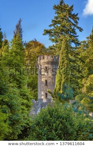 Kule bahçeler İrlanda gökyüzü ağaç mavi Stok fotoğraf © borisb17
