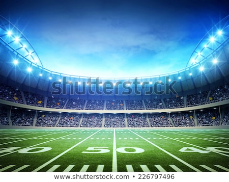 アメリカン サッカー 緑 フィールド 実例 フットボールの競技場 ストックフォト © enterlinedesign
